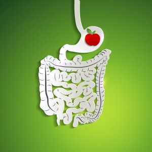 Enzymes | Apple in happy stomach